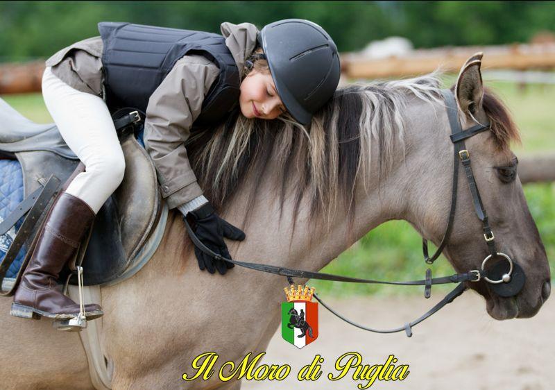 Offerta settimana vacanze a cavallo Taranto - Promozione vacanze in masseria bambini Taranto