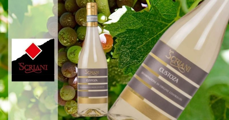Azienda Agricola SCRIANI - Online sales white table wine Custoza DOC 2018