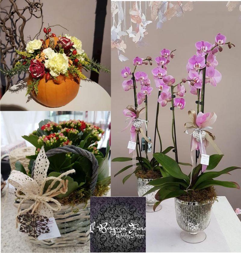 IL BORGO IN FIORE promozione piante e fiori